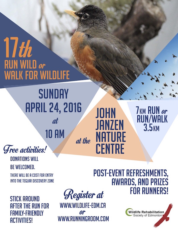 Run Wild or Walk for Wildlife Poster