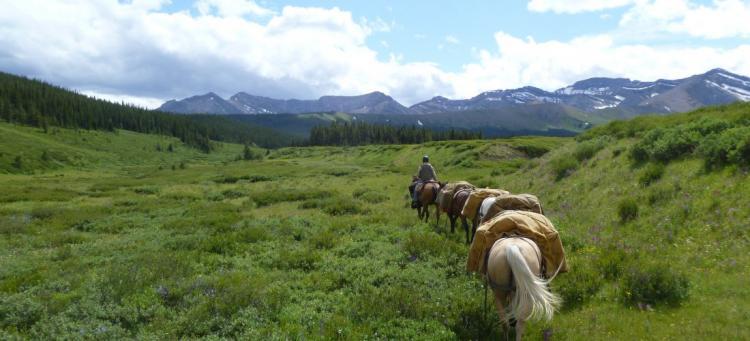 The Bighorn Trail in the Blackstone-Wapiabi. Photo © AWA Files