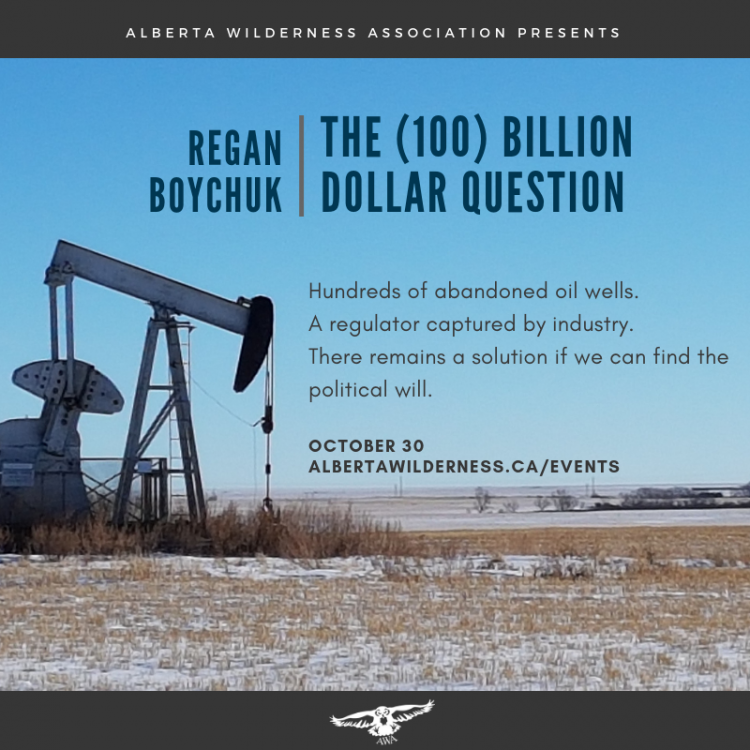 Poster: Regan Boychuk: The (100) Billion Dollar Question