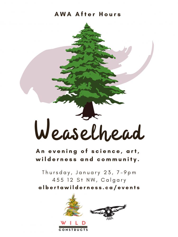 AWA After Hours: Weaselhead