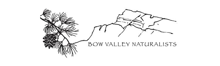 Bow Valley Naturalists logo