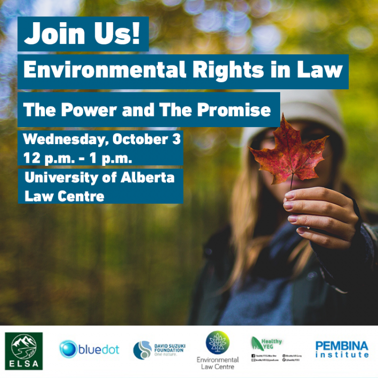 Environmental Rights in Law Poster