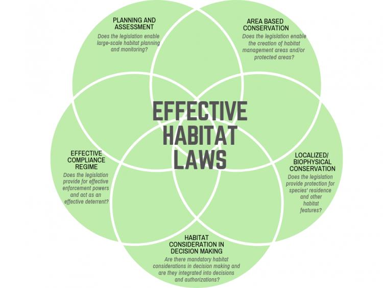 Effective Habitat Laws Diagram